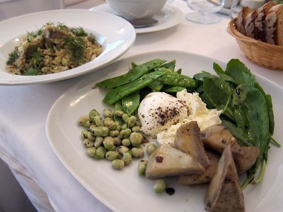 Kantin's spring salad and artichoke pilaf, photo by Ansel Mullins