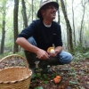Hail Caesar: Mushroom Hunting in Istanbul's Forests