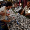 Since You Asked: Istanbul's Fish Scene?