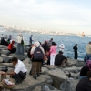 A (Shady) Place in the Sun: Picnicking in Istanbul's Concrete Jungle