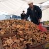 İnebolu Pazarı: Shroomin' à la Turca